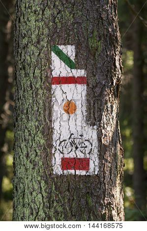 Poland Gorce Mountains trail blazing marks on a tree trunk at Gorce Mountains National Park