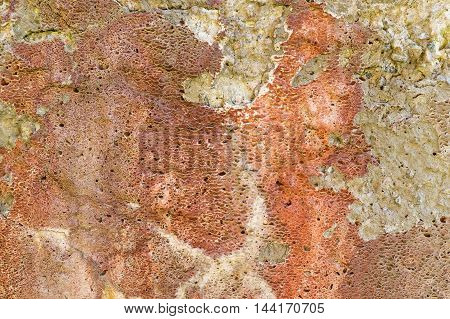Old plastered wall with crumbling red plaster as background
