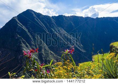 View Form Machu Pichu
