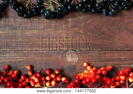 Bright autumn background with berries viburnum and chokeberry on wooden background with copy space