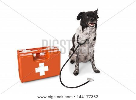 Dog With Stethoscope And First Aid Kit Over White Background