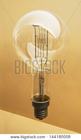 Tungsten Large Light Bulb.