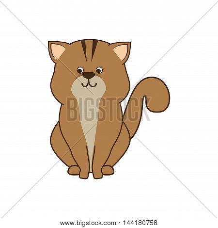 cat cartoon animal feline mascot pet domestic vector illustration
