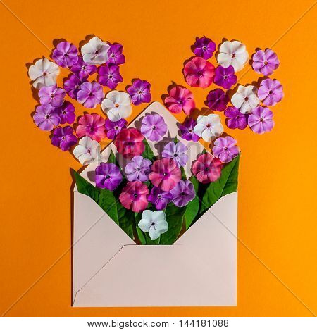 Colorful spring flowers in envelope, flower delivery concept