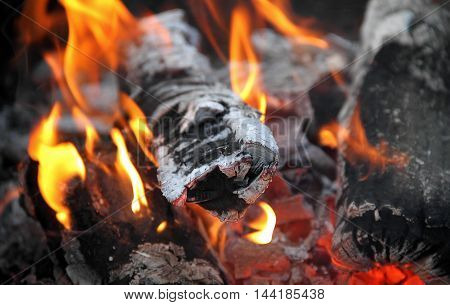 Flame dances on charred firewood logs at bonfire