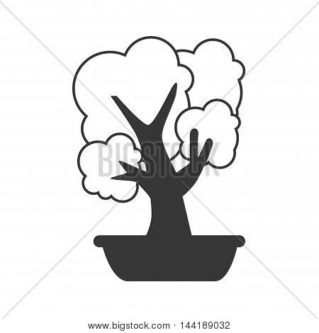 bonsai little tree plant decoration office work place vector illustration