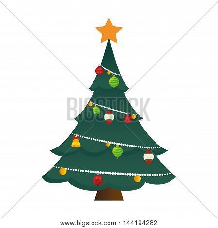 pine tall tree plant with traditional star and ornaments christmas decoration symbol vector illustration