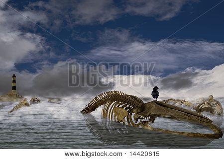 A canção de baleias Mark II