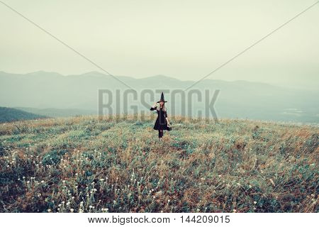 Beautiful young witch walking on autumn meadow toned image. Theme of Halloween and magic