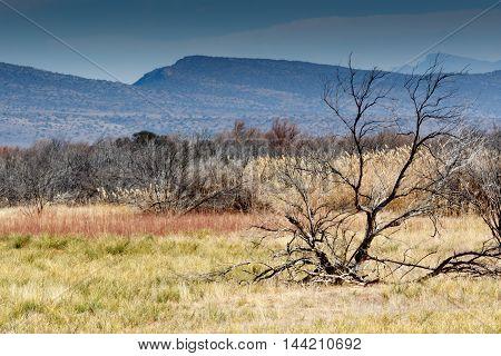 Mountain - Graaff-reinet Landscape