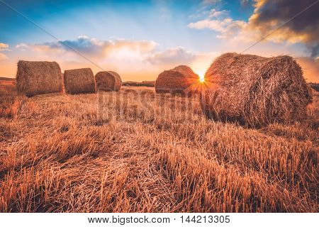 Sunrise over a field of hay bales.