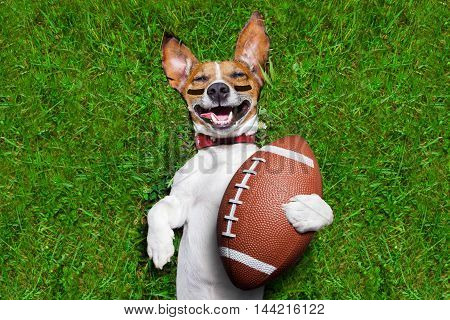 soccer dog holding a rugby ball and laughing out loud