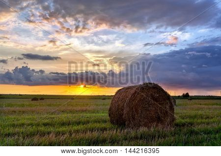 Rolls of haystack on fields at harvesting time