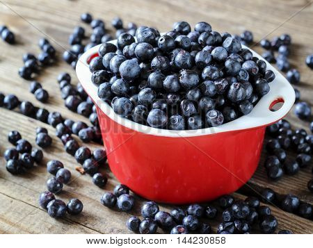 Fresh Bilberry Fruit In A Bowl, Organic Berries