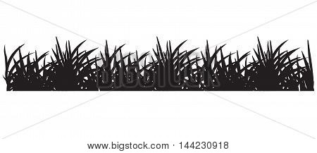 Backgrounds Of Black Grass meadow background horizontal medicine