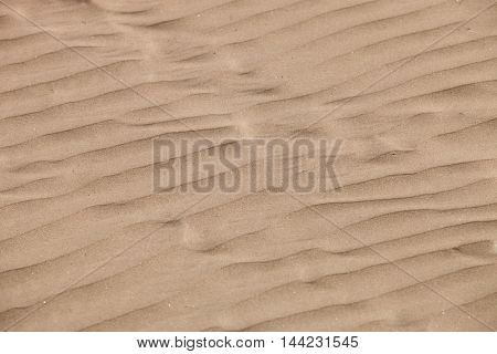 Detail of a beautiful desert sand beach
