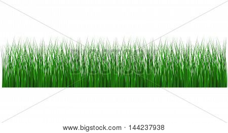 Grass icon environment lawn length foliage lush panorama