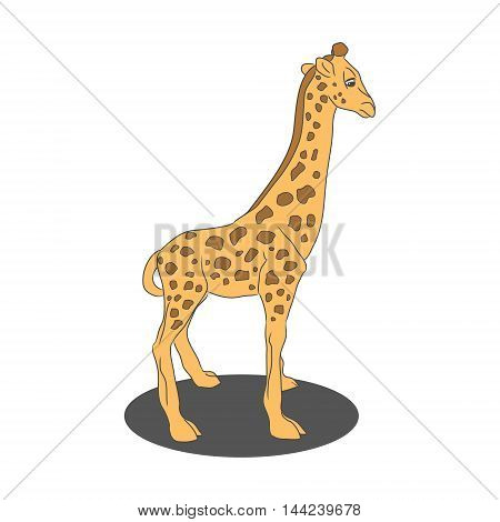 A child's drawing of a little giraffe on white background