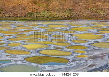Spotted Lake in British Columbia, Canada
