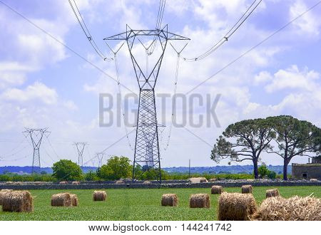 electricity pylons in the countryside apulia. Italy