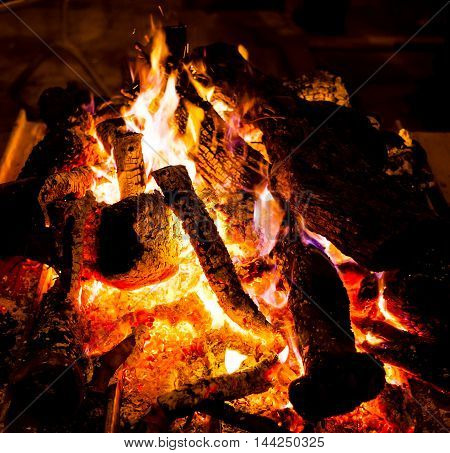 View brightly are burning fire wood on night