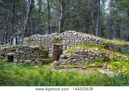 ruins of a stone building in the woods