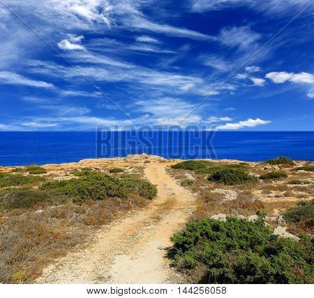 Summer scene with rut road to sea in nice day
