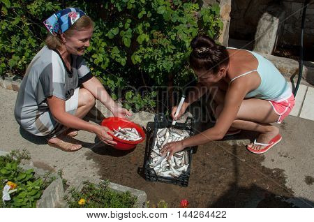 Two women washing fish goatfish water from hoses summer day