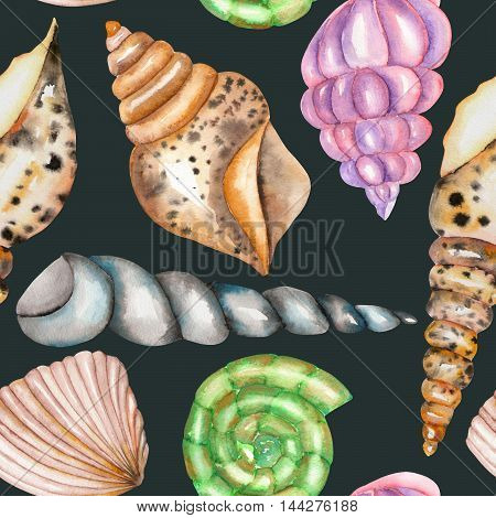 A seamless pattern with the isolated shells, painted in a watercolor on a dark blue background