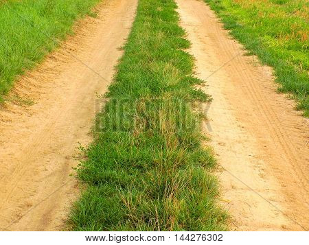Road in nature on field during day