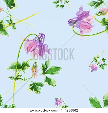 flowers aquilegia seamless pattern background watercolor art