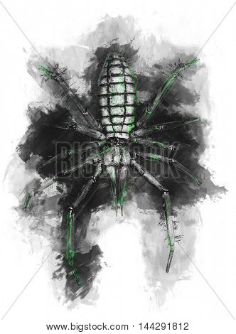 Top down view on scary looking green and black illustration of spider isolated on white background.
