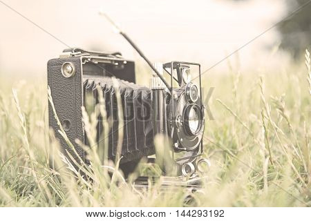 Vintage camera in a grass - toned image