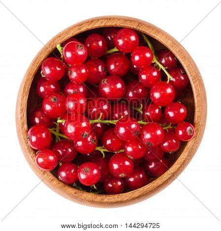 Redcurrant berries in a wooden bowl on white background, also called red currant. Ripe fruits of Ribes rubrum in the gooseberry family. Edible, raw, organic, vegan food. Isolated macro photo close up.