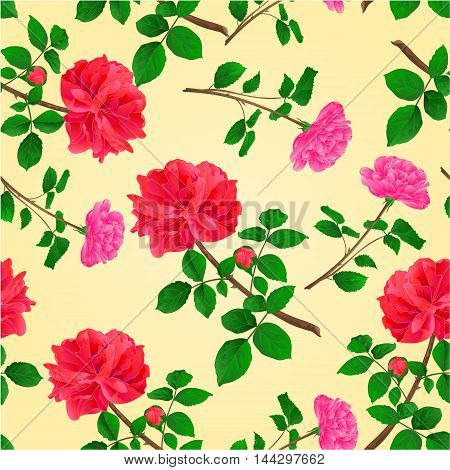 Seamless texture twig red and pink roses with leaves and bud vector illustration