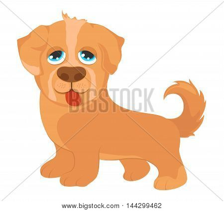 Ginger dog isolated on a white background