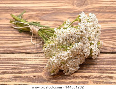 fresh yarrow flowers on a wooden background