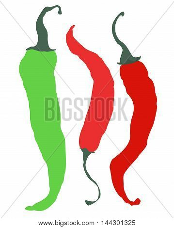 Three peppers isolated on white background. Two red peppers and one green.