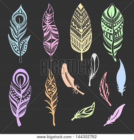 Set of Ethnic feathers. Hand drawn feathers in pastel colors. Vector illustration.