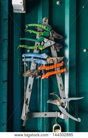 Close-up of colorful rusty pliers hanging on metal rack against of green wall in garage