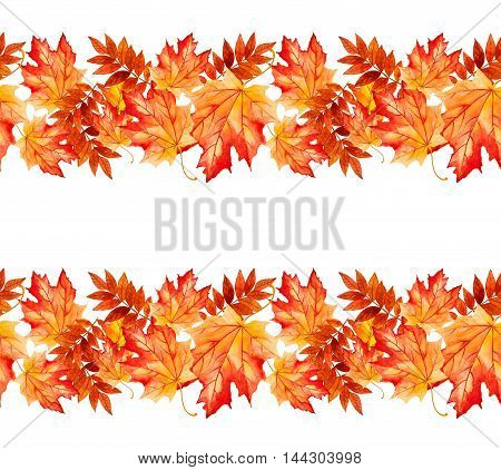 collection beautiful colorful autumn leaves. .Seammless pattern