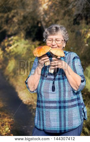Happy active older woman - mushroom picker inhale the smell of white mushrooms found it.