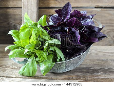 Fresh Red And Green Basil In A Strainer