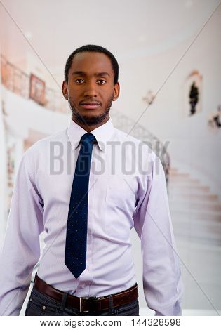 Handsome man wearing shirt and tie standing posing for camera, business concept.