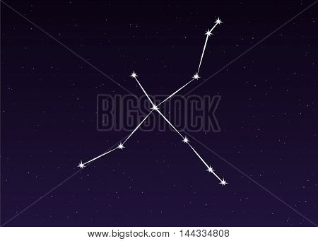 cygnus swan constellation sky illustration on night background