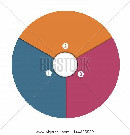 Colourful In The Form Of Flower Petals Around Circle. Template Infographic 3 Position. Pie Chart