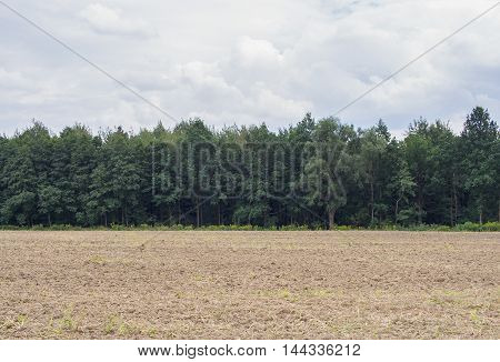Field At The Edge Of A Forest With A Cloudy Sky In Jelenia Gora Poland