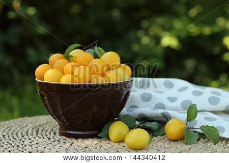plum in a bowl on a table in a garden