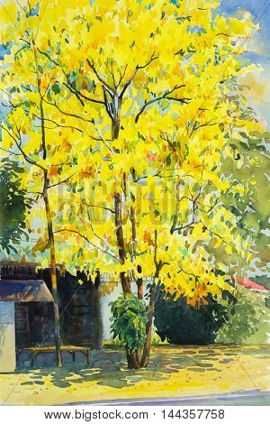 watercolor painting yellow orange color of golden shower tree flowers in sky and cloud background original painting.