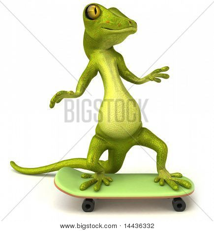 Lizard on a skateboard